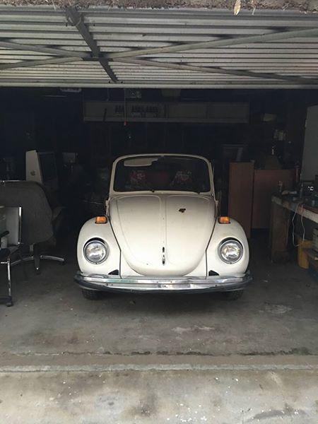 1977 VW Bug